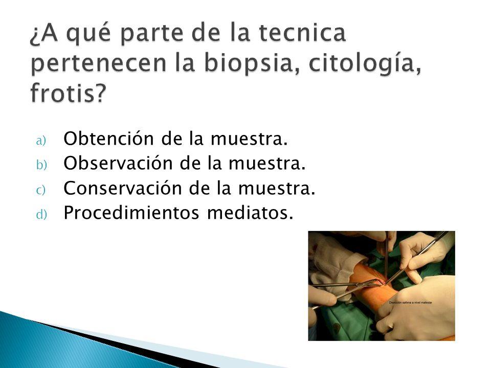 ¿A qué parte de la tecnica pertenecen la biopsia, citología, frotis