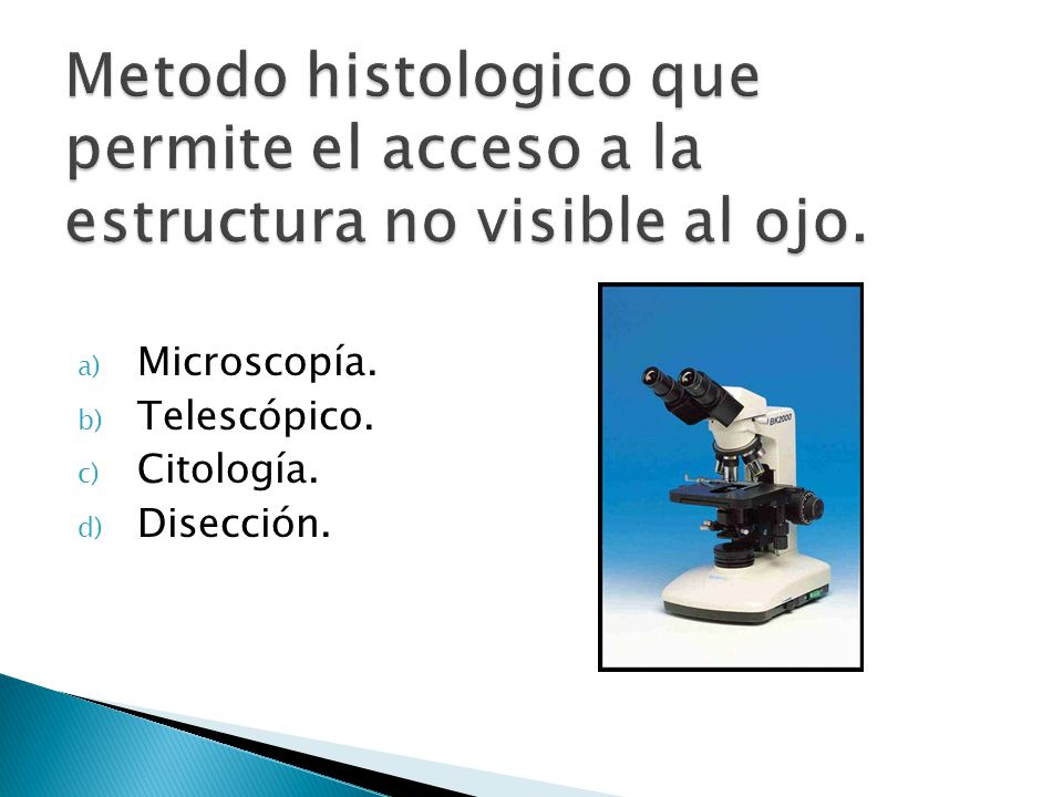 Metodo histologico que permite el acceso a la estructura no visible al ojo.