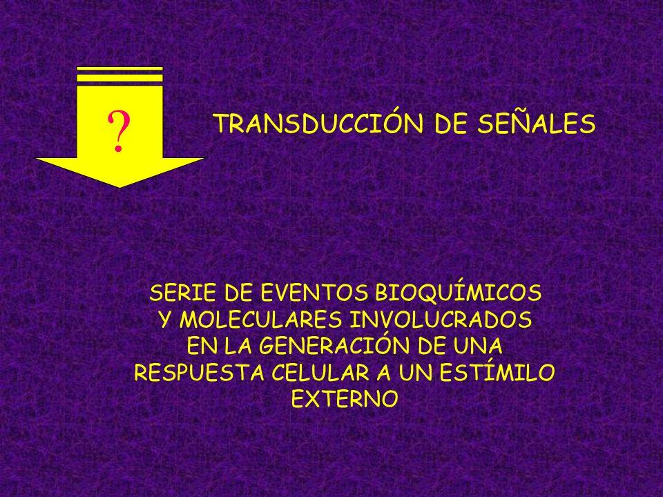 TRANSDUCCIÓN DE SEÑALES SERIE DE EVENTOS BIOQUÍMICOS