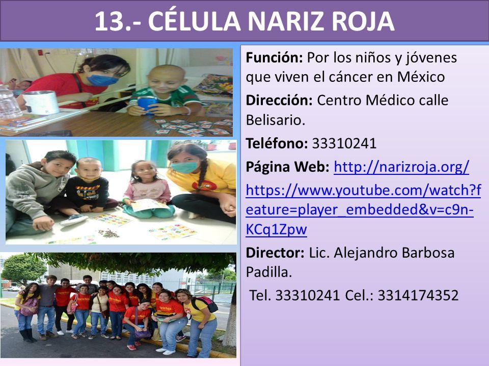 13.- CÉLULA NARIZ ROJA Función: Por los niños y jóvenes que viven el cáncer en México. Dirección: Centro Médico calle Belisario.