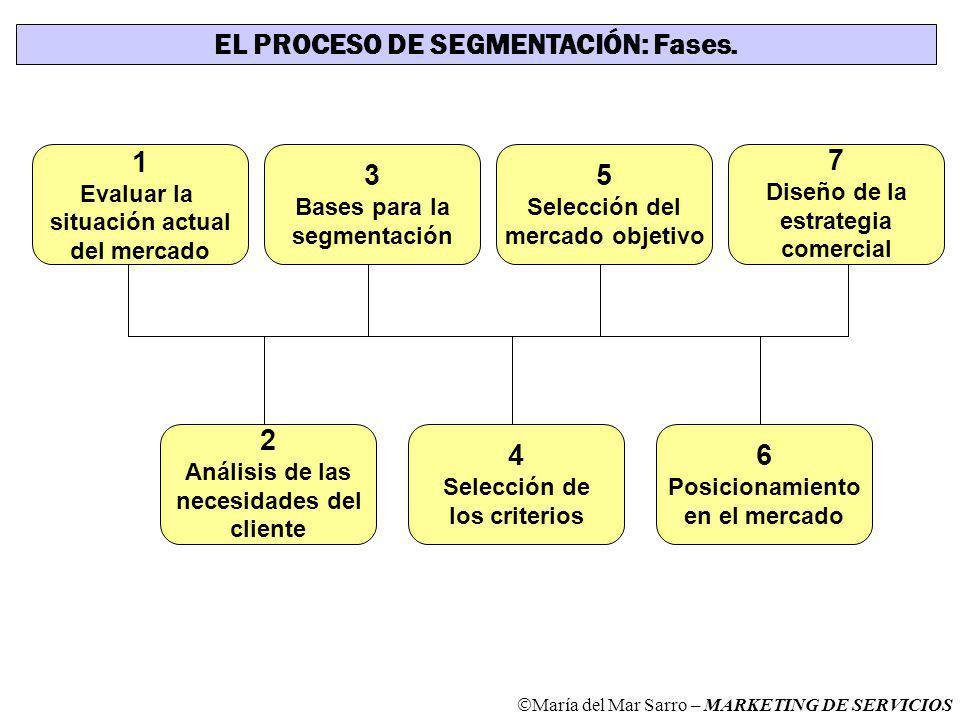 EL PROCESO DE SEGMENTACIÓN: Fases.