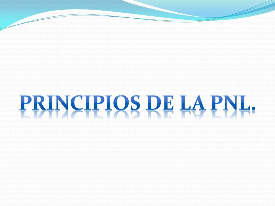 Principios de la pnl.