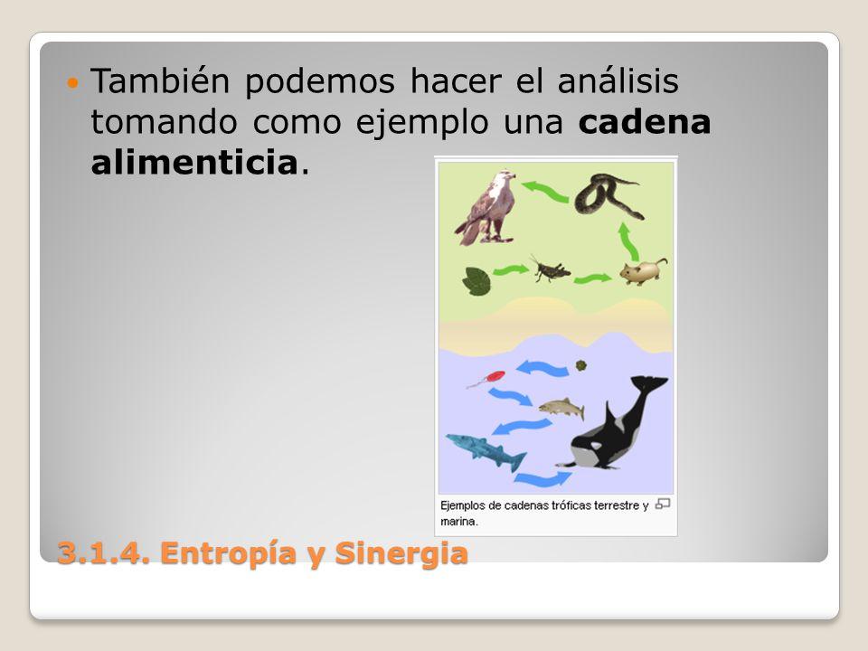 También podemos hacer el análisis tomando como ejemplo una cadena alimenticia.