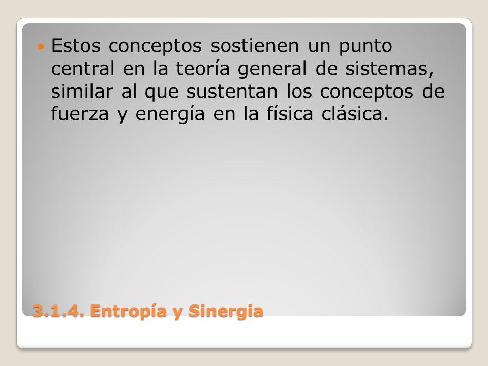 Estos conceptos sostienen un punto central en la teoría general de sistemas, similar al que sustentan los conceptos de fuerza y energía en la física clásica.