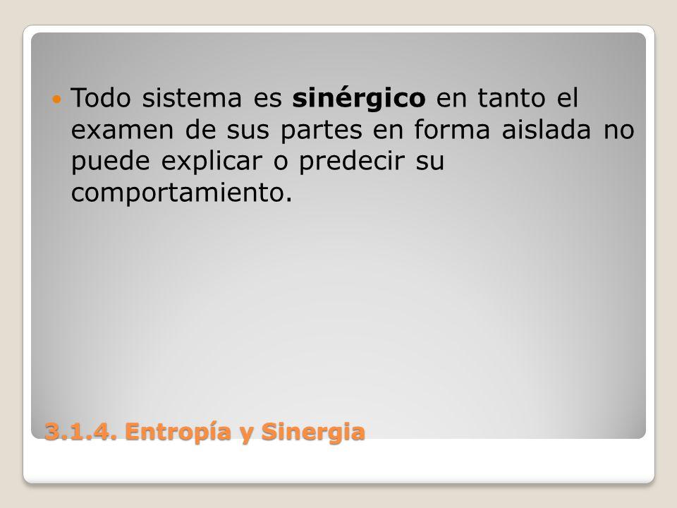 Todo sistema es sinérgico en tanto el examen de sus partes en forma aislada no puede explicar o predecir su comportamiento.