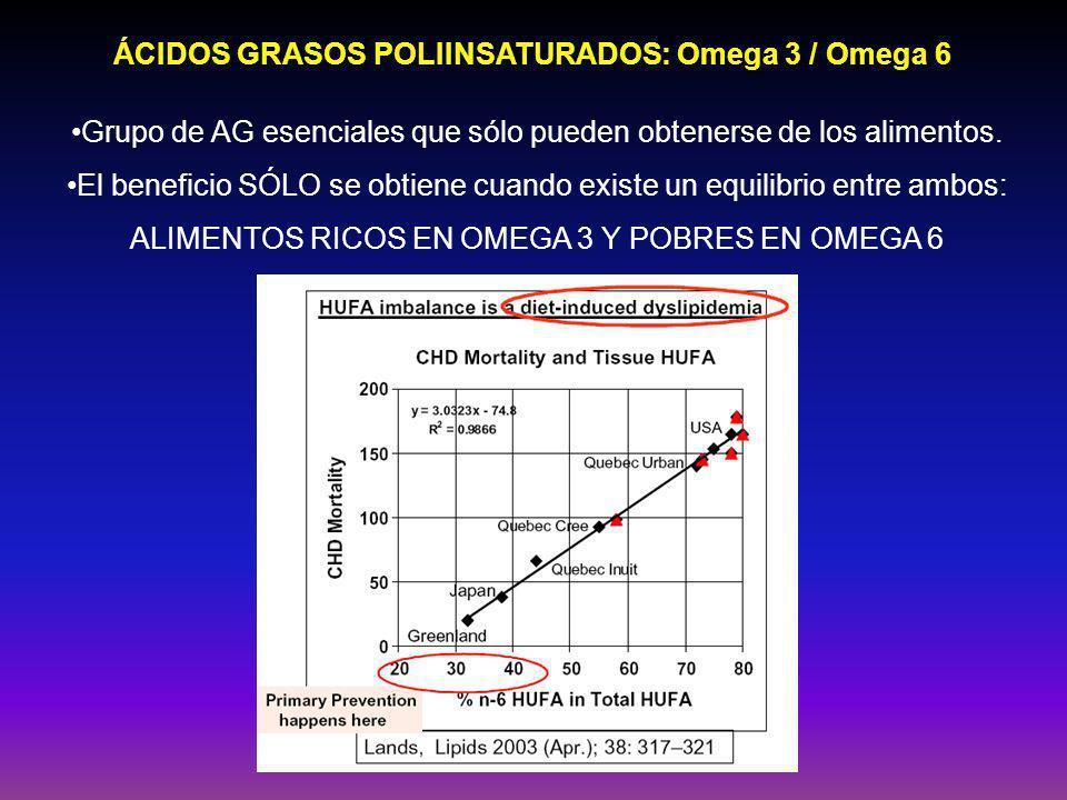 ÁCIDOS GRASOS POLIINSATURADOS: Omega 3 / Omega 6