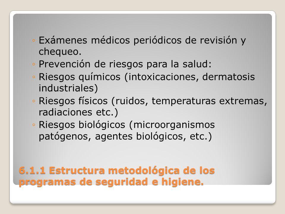 6.1.1 Estructura metodológica de los programas de seguridad e higiene.