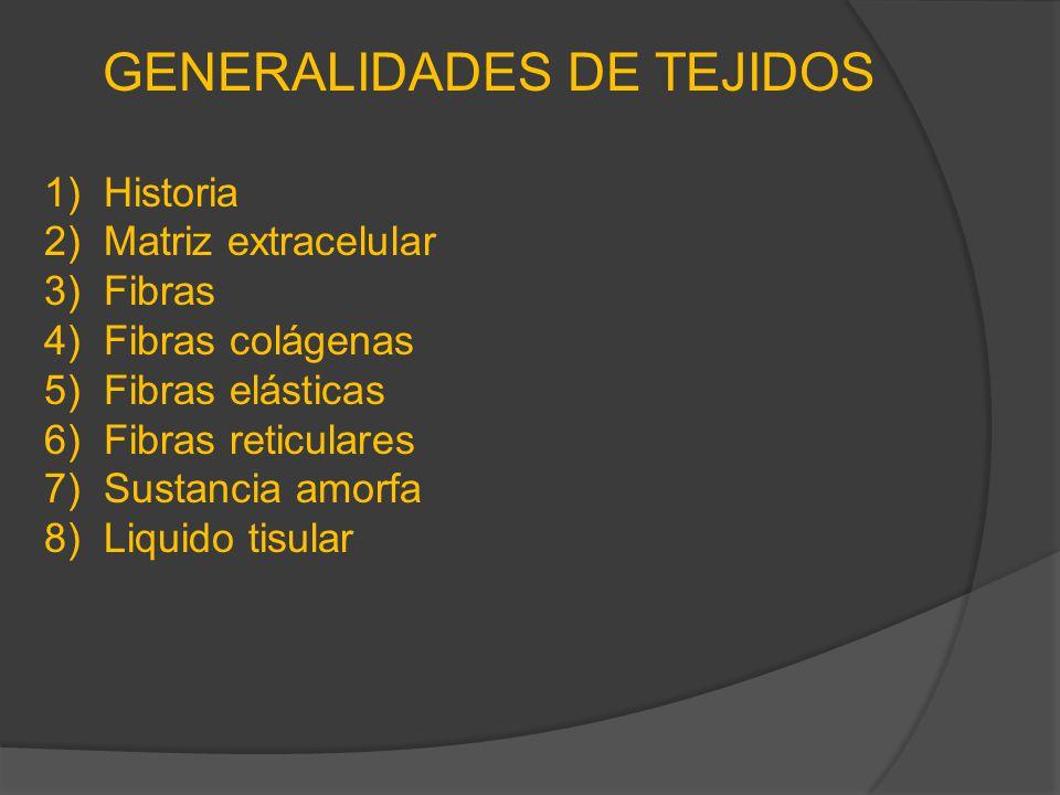 GENERALIDADES DE TEJIDOS