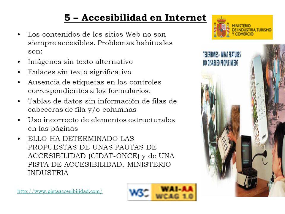 5 – Accesibilidad en Internet