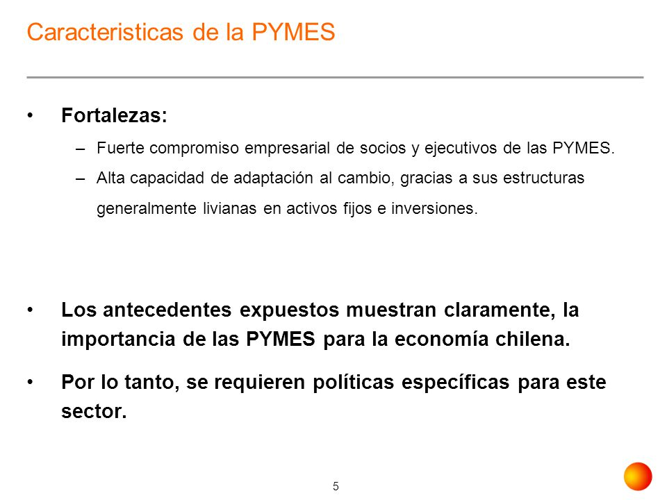Caracteristicas de la PYMES