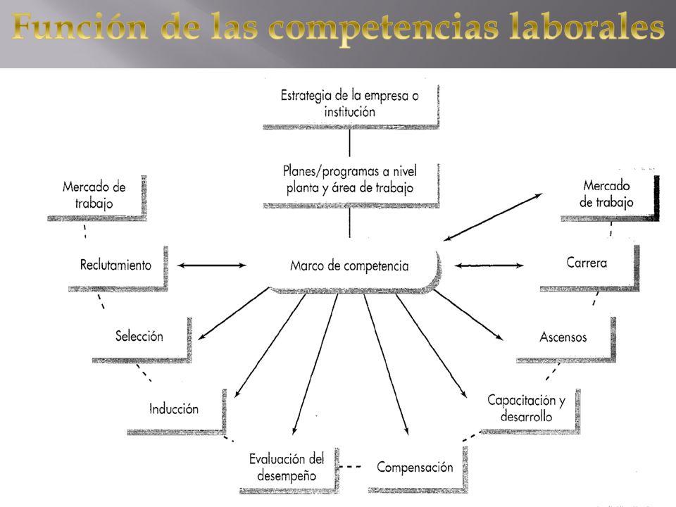 Función de las competencias laborales