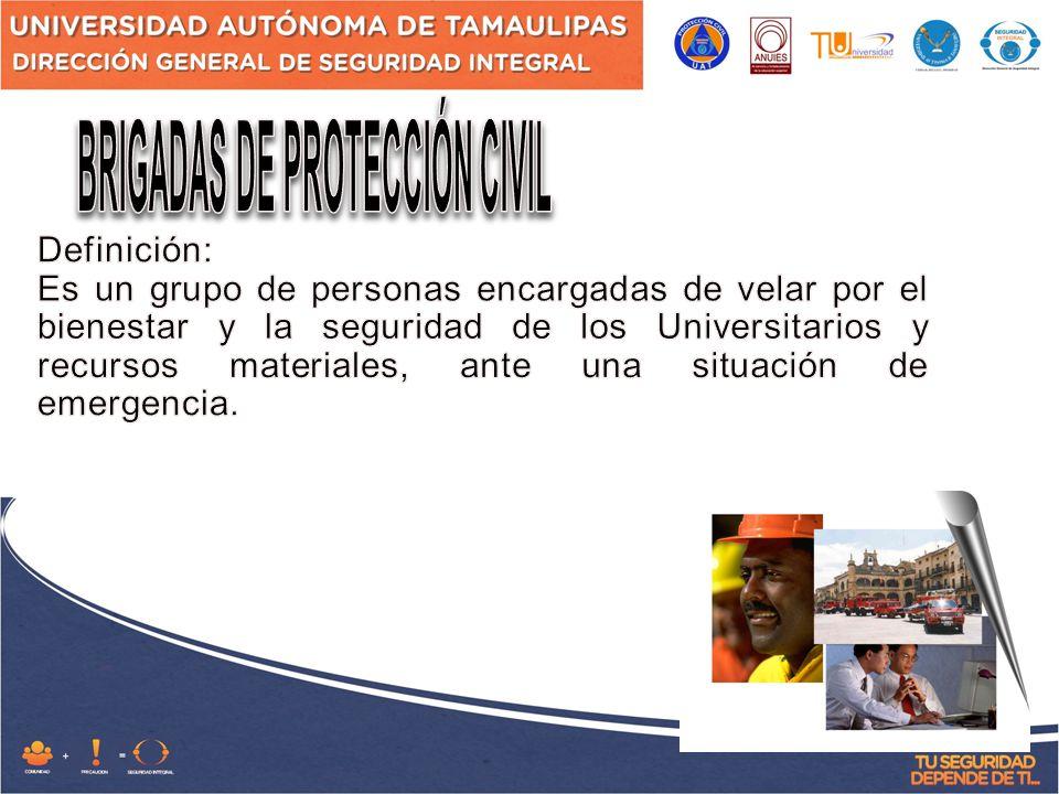 BRIGADAS DE PROTECCIÓN CIVIL