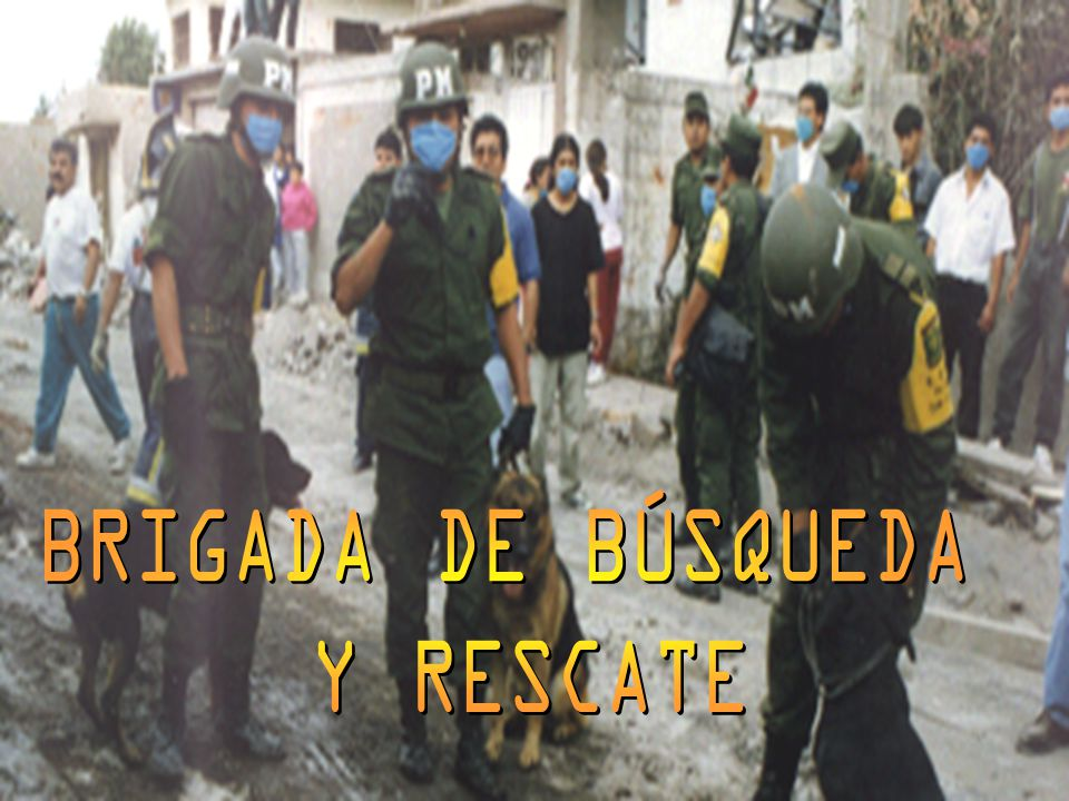 BRIGADA DE BÚSQUEDA Y RESCATE