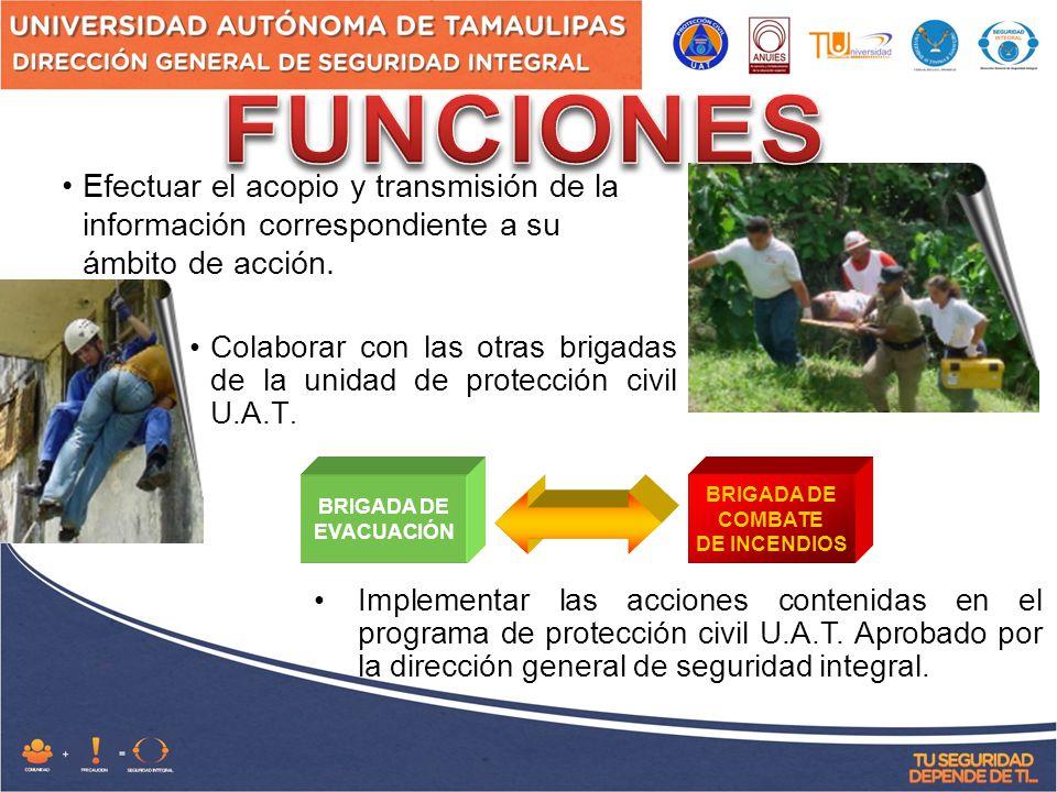 FUNCIONES Efectuar el acopio y transmisión de la información correspondiente a su ámbito de acción.