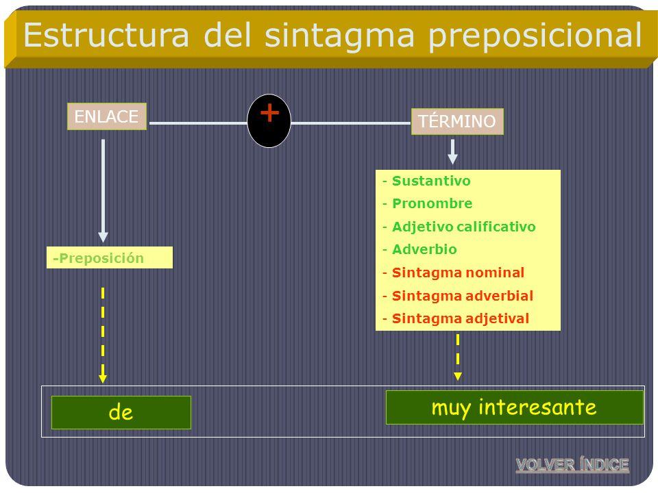 + Estructura del sintagma preposicional el amigo de mi hermano