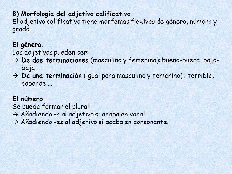 B) Morfología del adjetivo calificativo