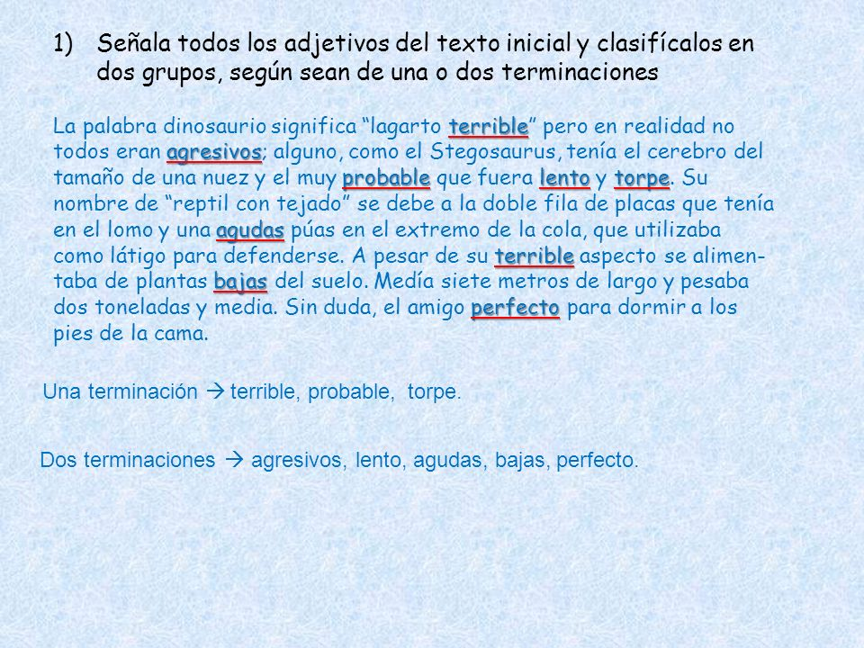 Señala todos los adjetivos del texto inicial y clasifícalos en dos grupos, según sean de una o dos terminaciones