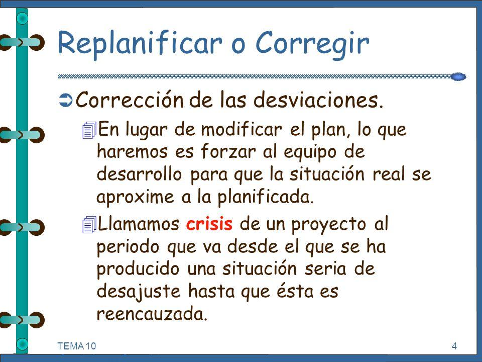 Crisis en Proyectos Informáticos.