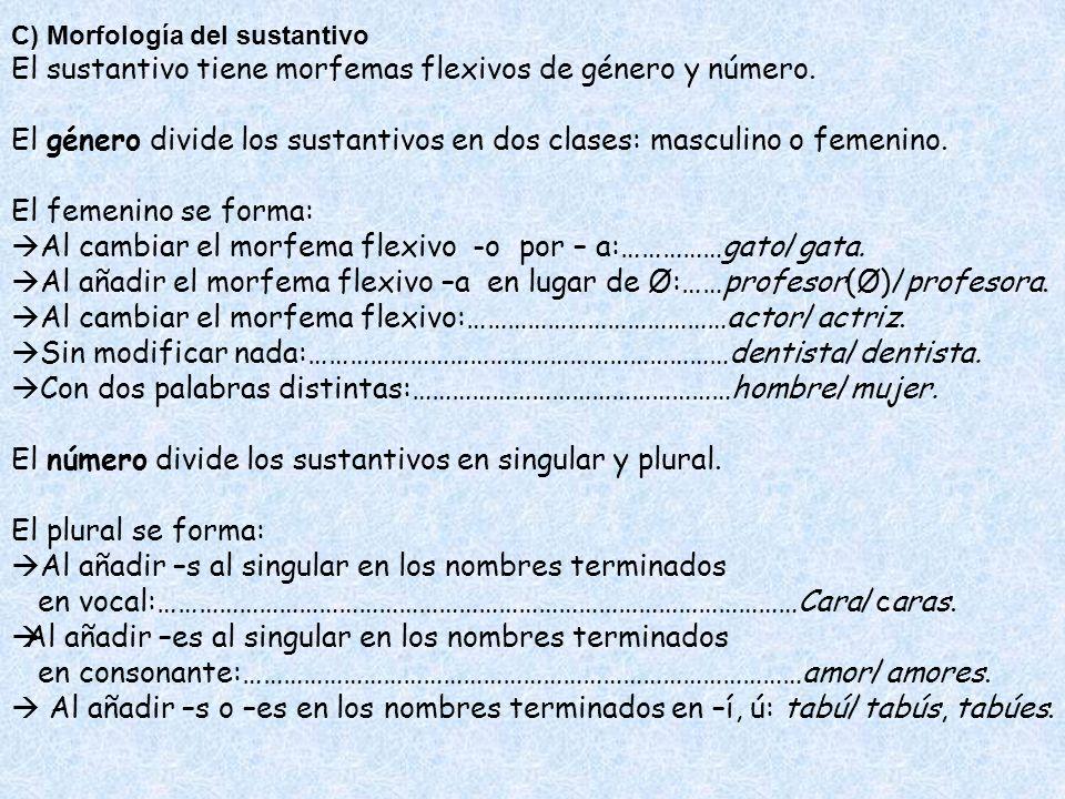 El sustantivo tiene morfemas flexivos de género y número.