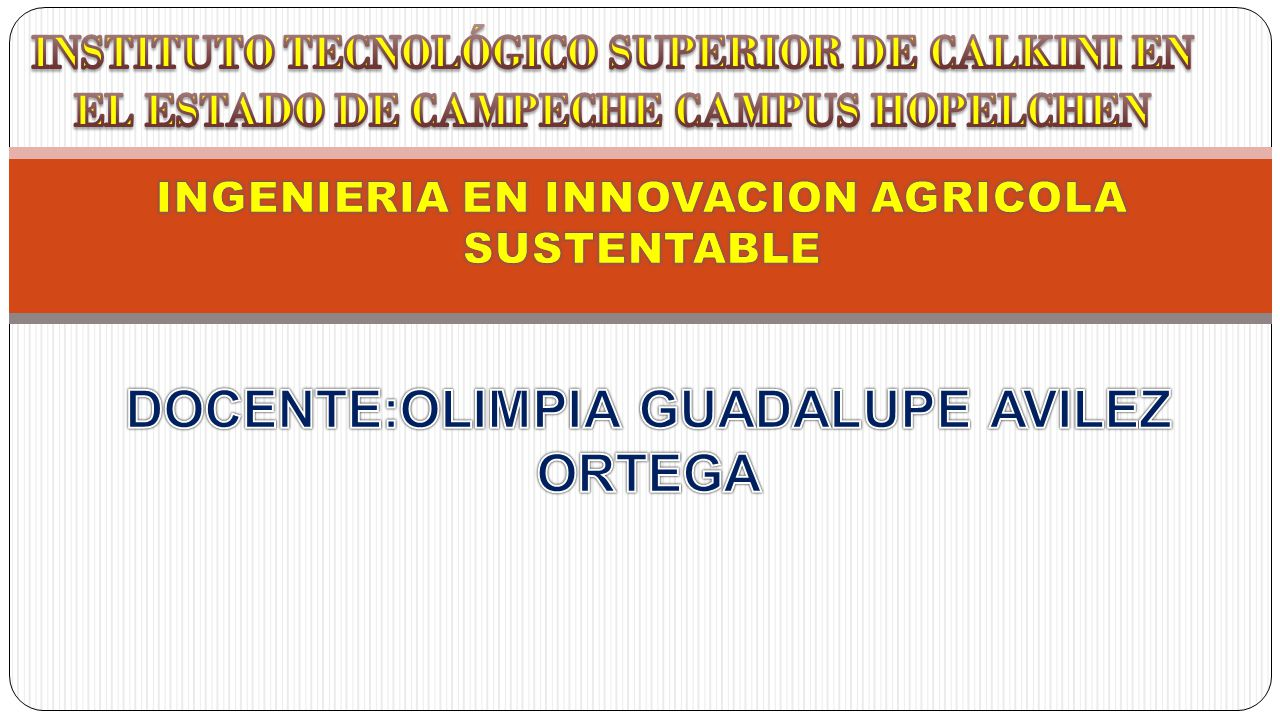 DOCENTE:OLIMPIA GUADALUPE AVILEZ ORTEGA