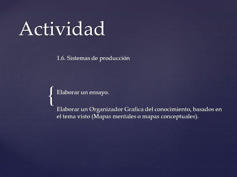 Actividad 1.6. Sistemas de producción Elaborar un ensayo.