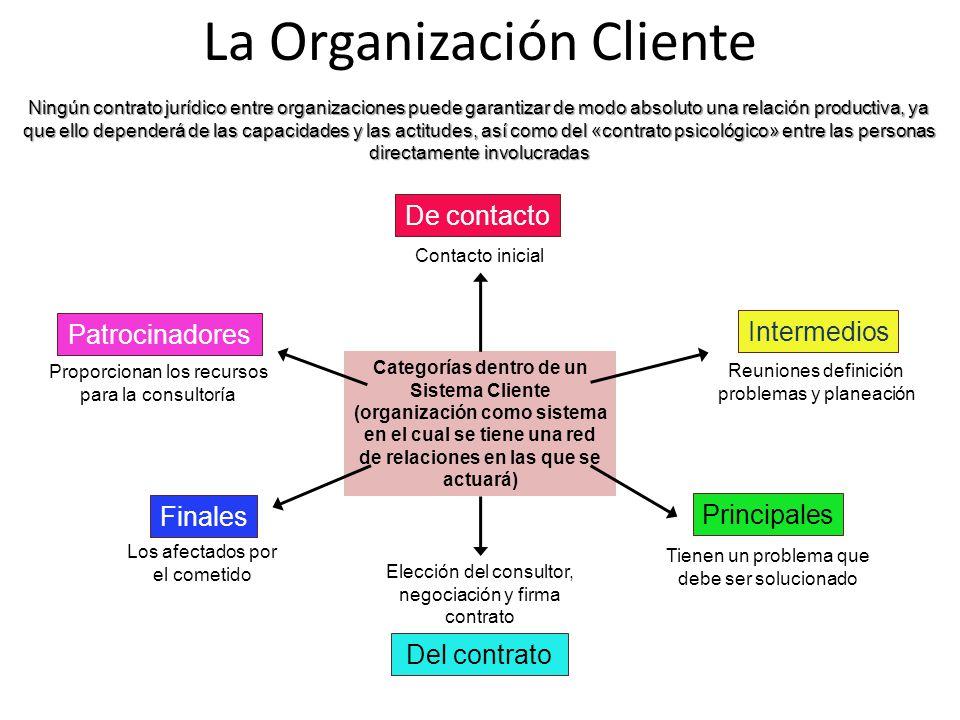 La Organización Cliente
