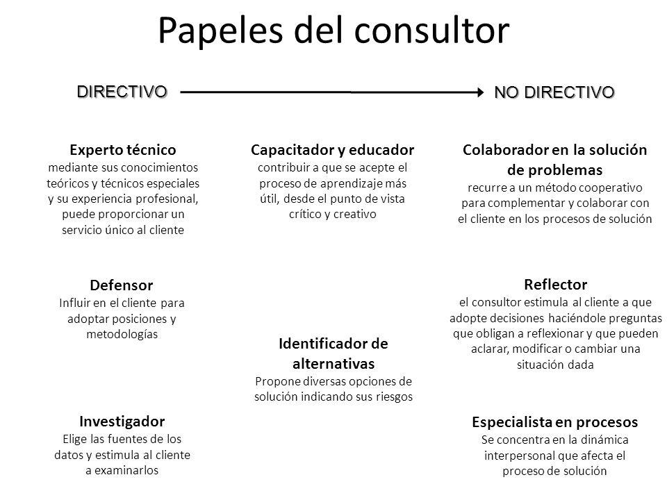 Papeles del consultor DIRECTIVO NO DIRECTIVO Experto técnico