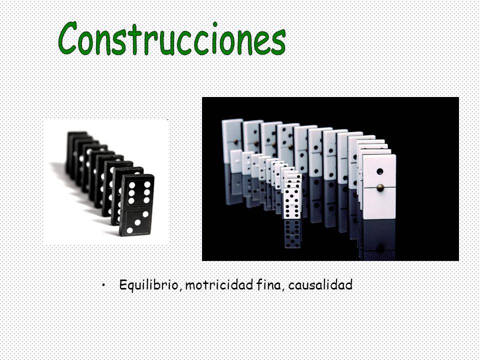 Construcciones Equilibrio, motricidad fina, causalidad