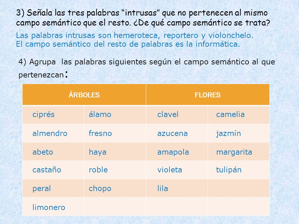 3) Señala las tres palabras intrusas que no pertenecen al mismo campo semántico que el resto. ¿De qué campo semántico se trata