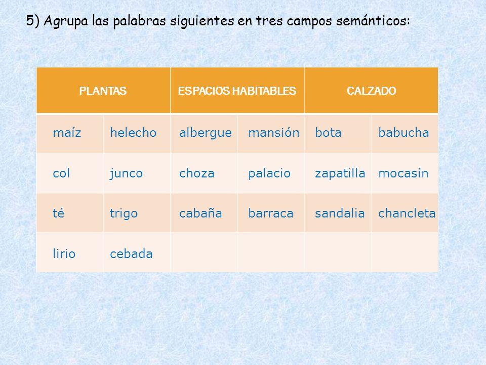 5) Agrupa las palabras siguientes en tres campos semánticos: