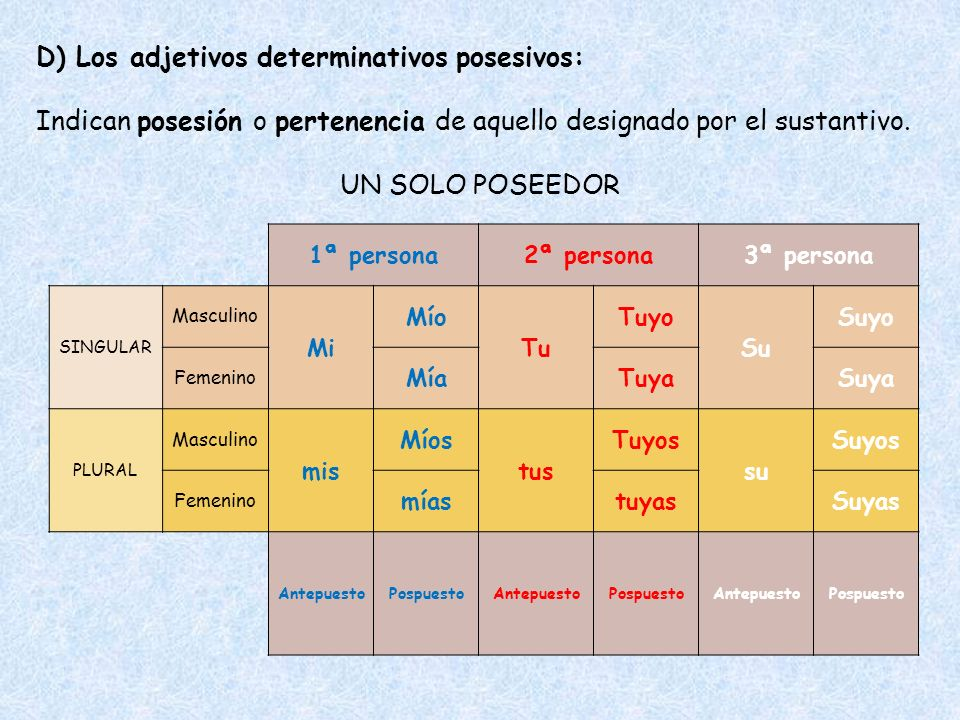 D) Los adjetivos determinativos posesivos: