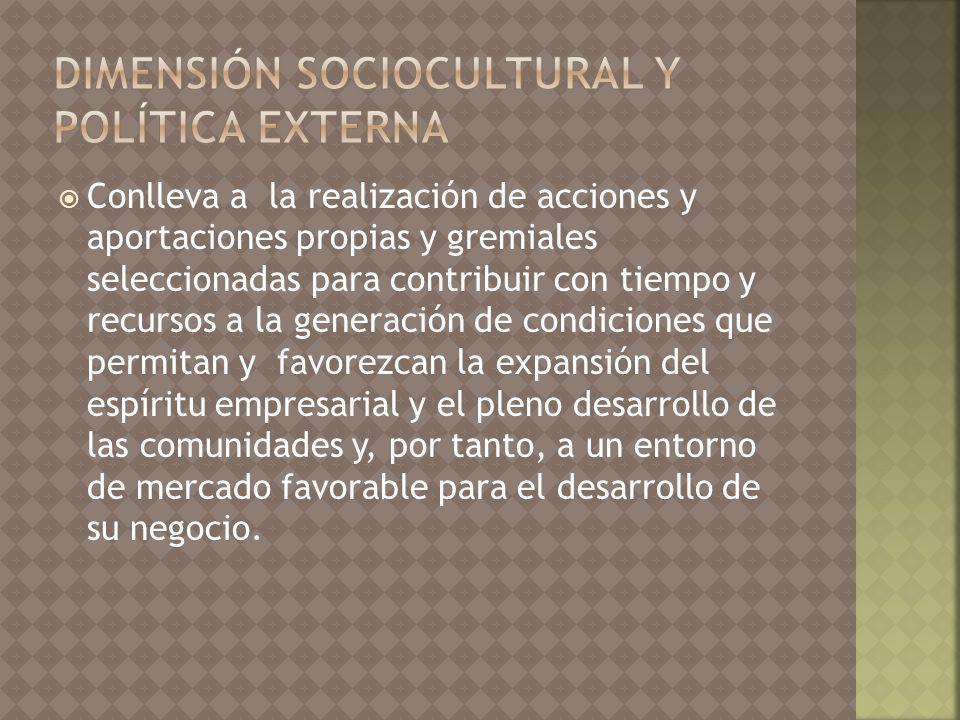 dimensión sociocultural y política externa