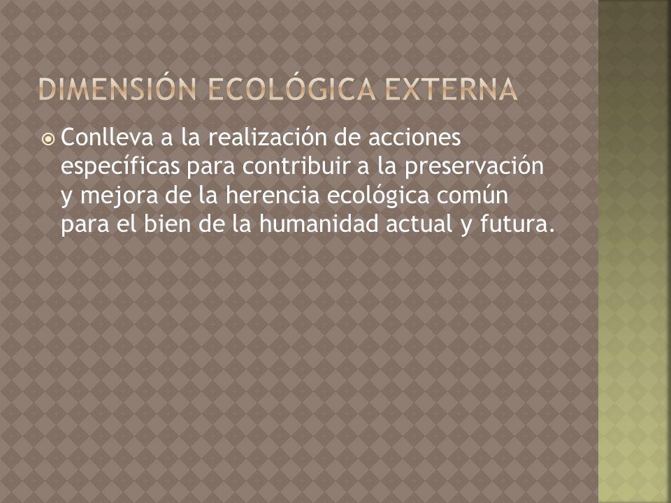 dimensión ecológica externa