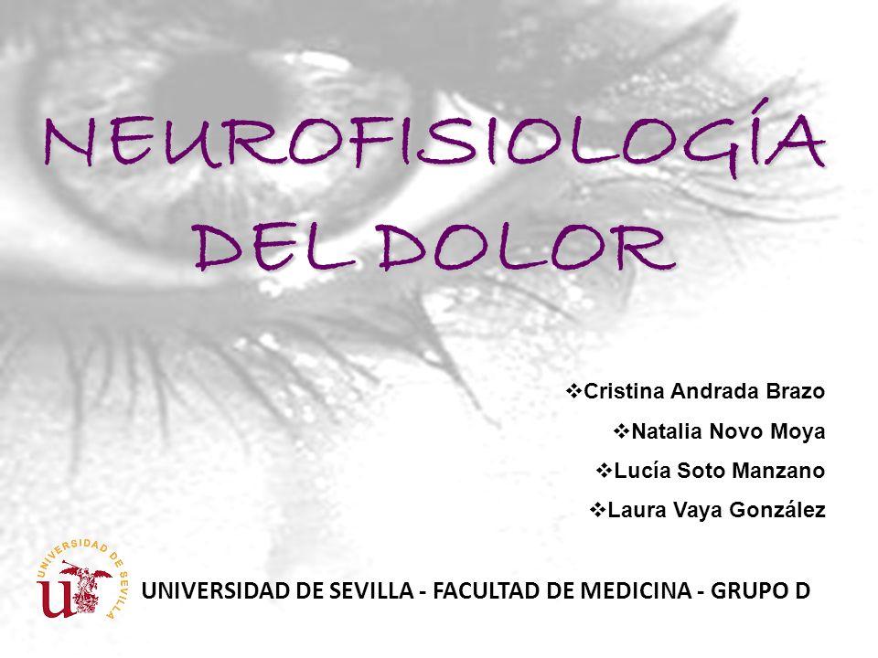 NEUROFISIOLOGÍA DEL DOLOR