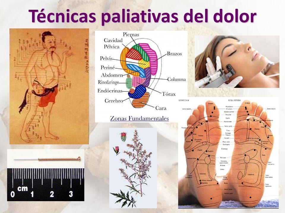 Técnicas paliativas del dolor