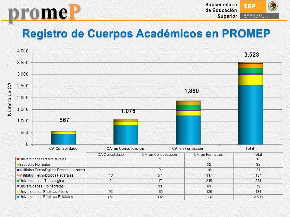 Registro de Cuerpos Académicos en PROMEP