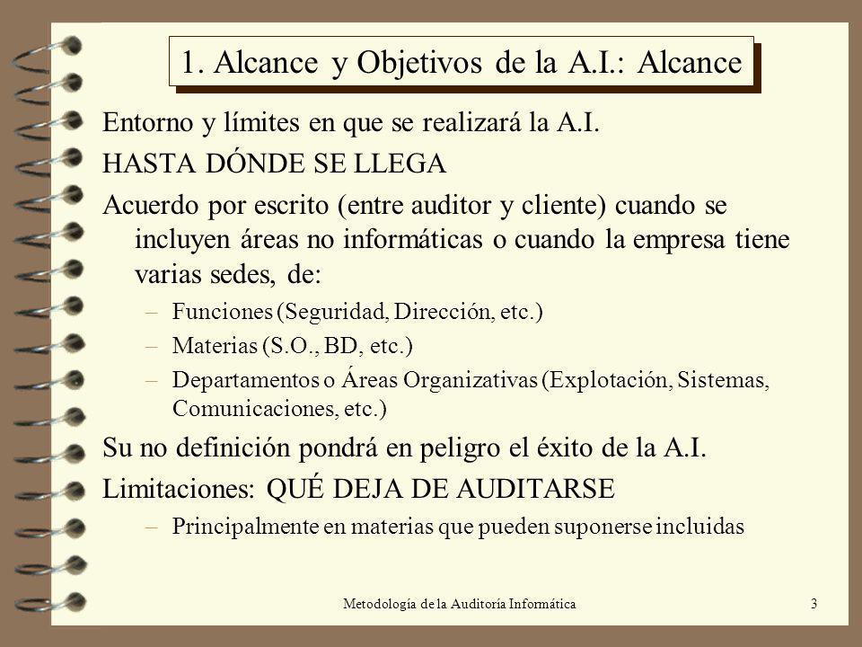 1. Alcance y Objetivos de la A.I.: Alcance