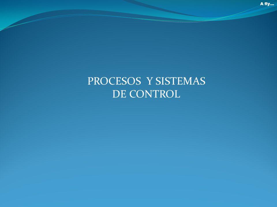 A fly… PROCESOS Y SISTEMAS DE CONTROL