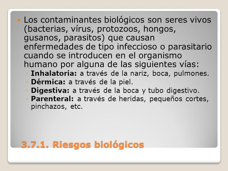 Los contaminantes biológicos son seres vivos (bacterias, vírus, protozoos, hongos, gusanos, parasitos) que causan enfermedades de tipo infeccioso o parasitario cuando se introducen en el organismo humano por alguna de las siguientes vías: