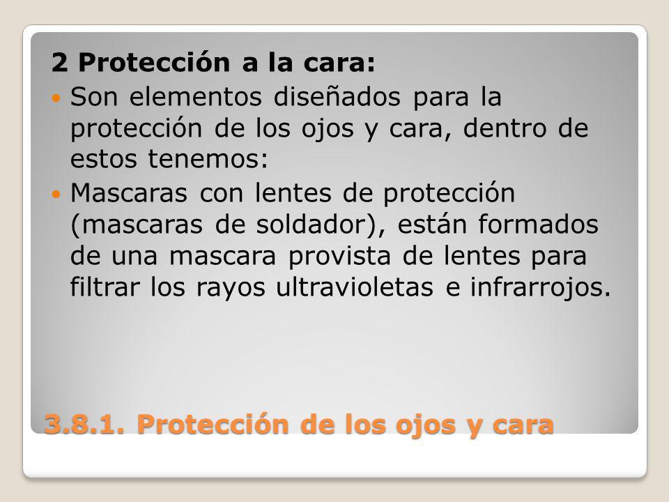 3.8.1. Protección de los ojos y cara