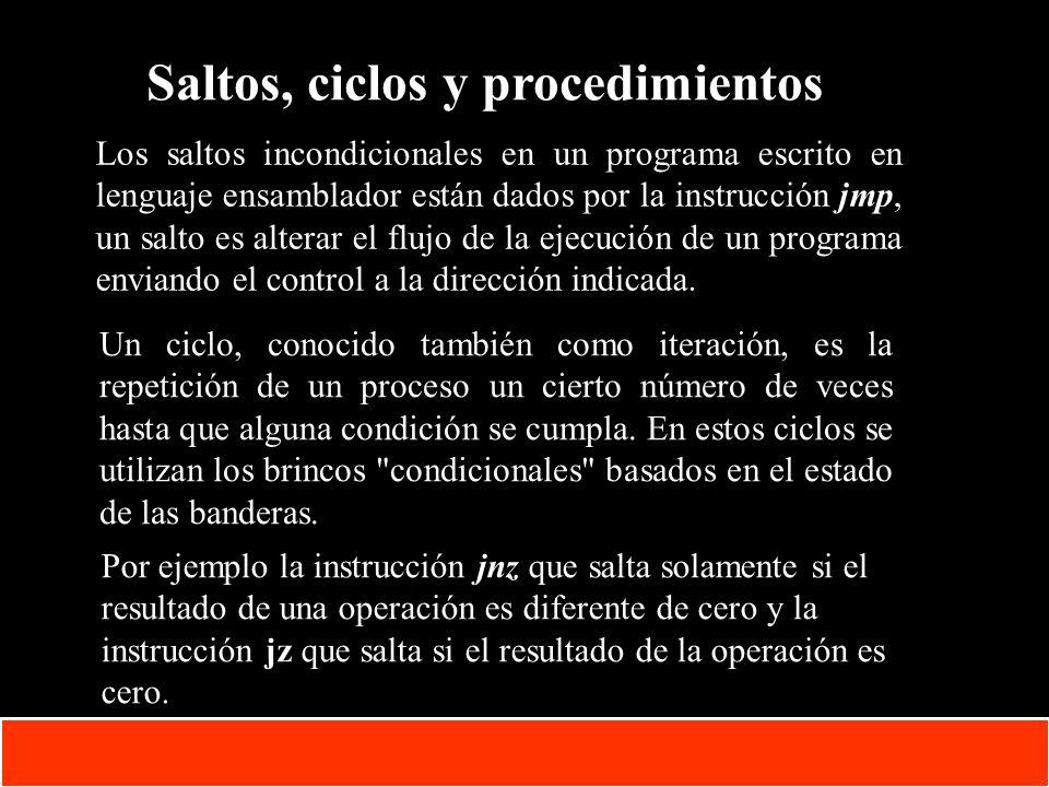 Saltos, ciclos y procedimientos