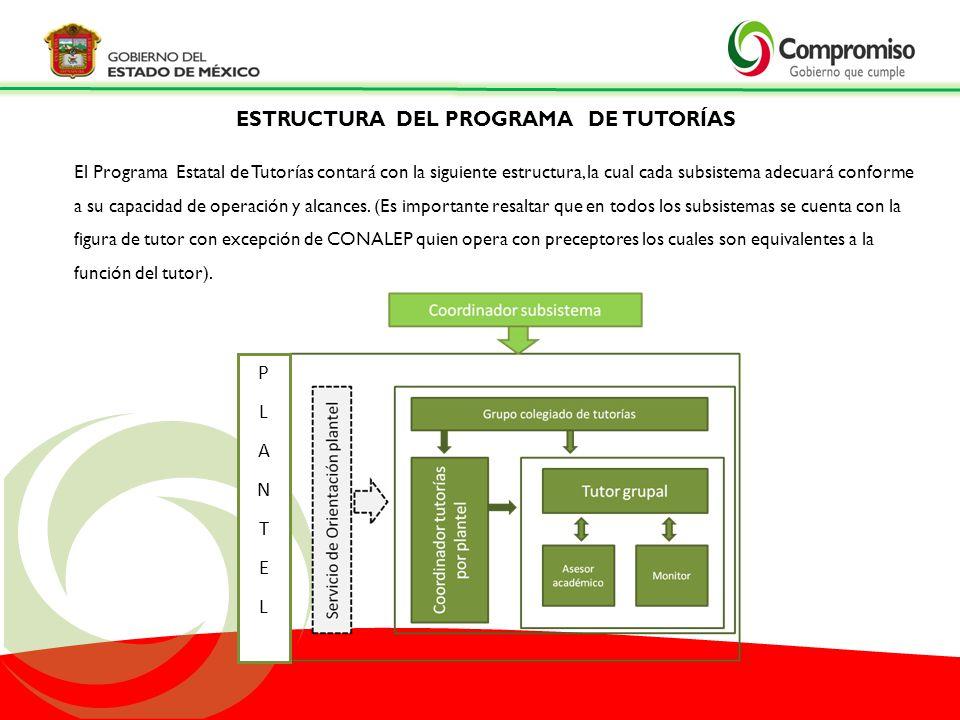 ESTRUCTURA DEL PROGRAMA DE TUTORÍAS