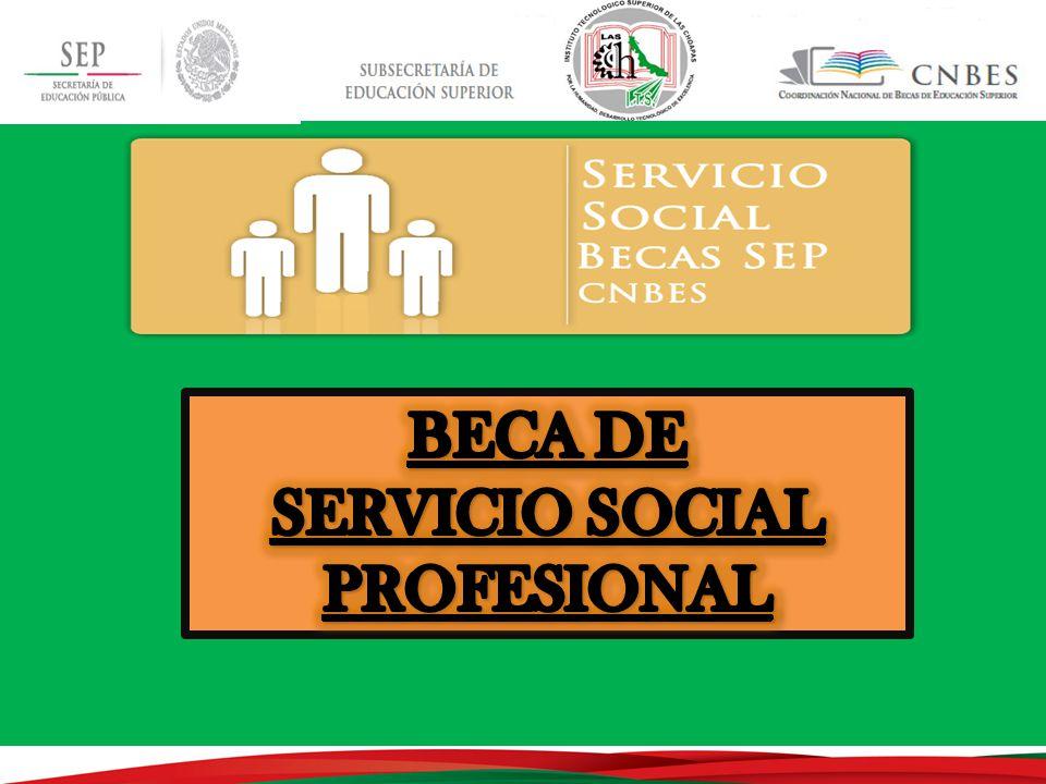 SERVICIO SOCIAL PROFESIONAL