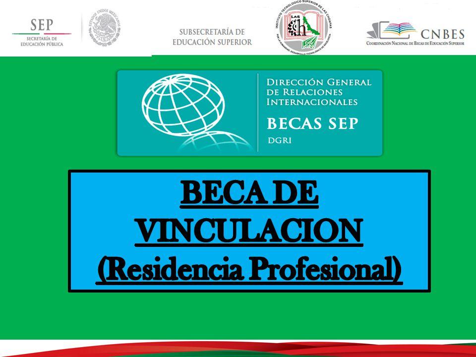 (Residencia Profesional)