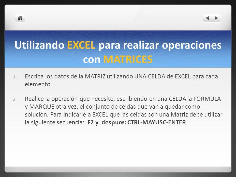 Utilizando EXCEL para realizar operaciones con MATRICES
