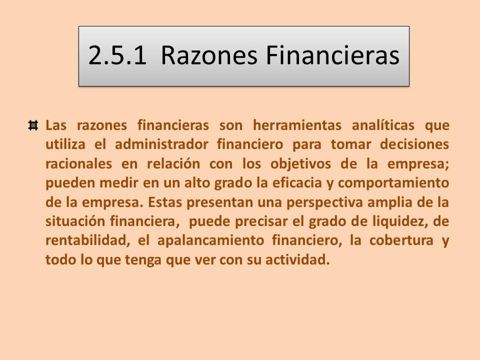 2.5.1 Razones Financieras