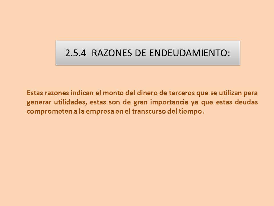2.5.4 RAZONES DE ENDEUDAMIENTO: