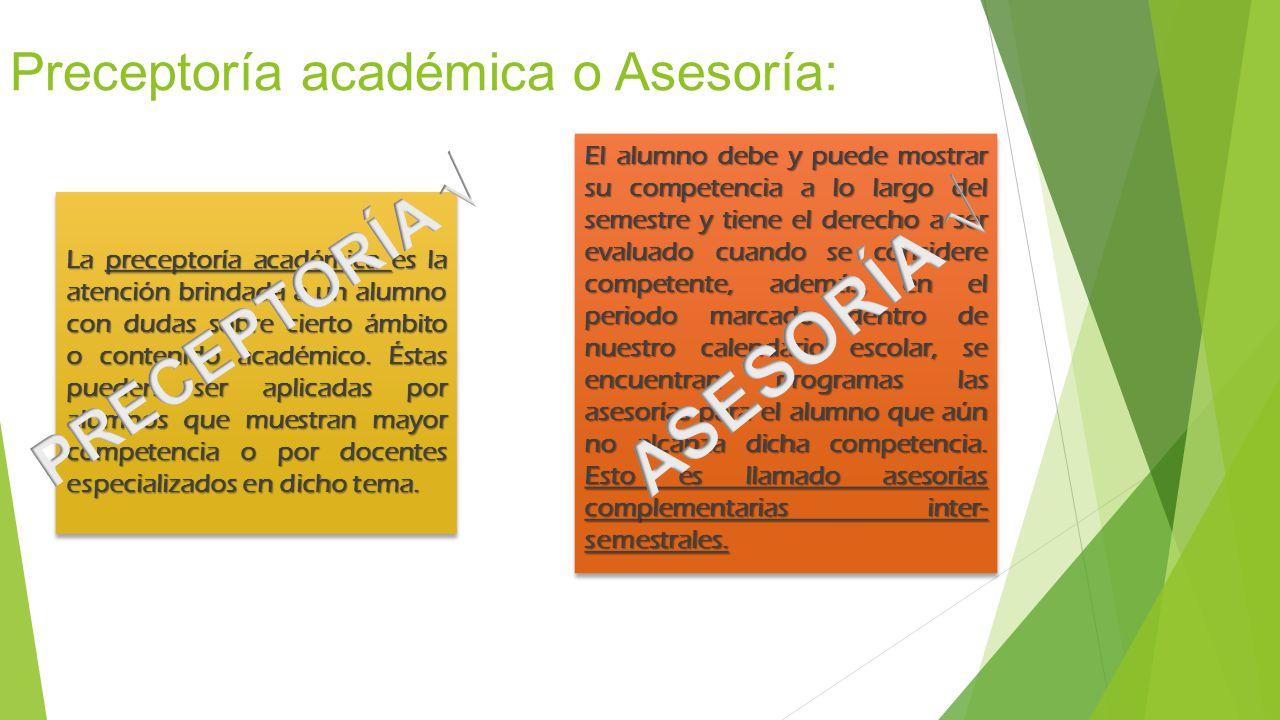 Preceptoría académica o Asesoría: