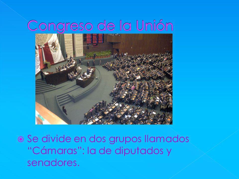 Congreso de la Unión Se divide en dos grupos llamados Cámaras : la de diputados y senadores.