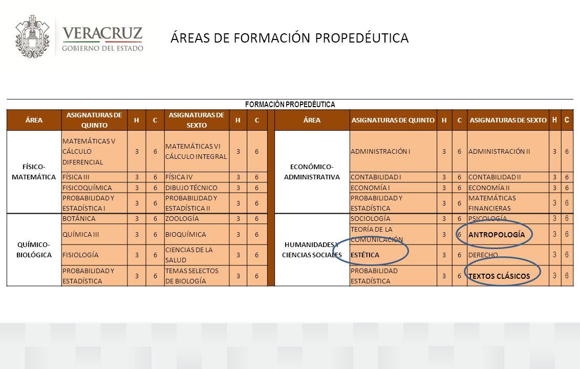 ÁREAS DE FORMACIÓN PROPEDÉUTICA